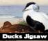 Ducks Jigsaw